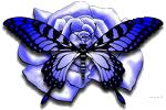 sticker_62183833_132