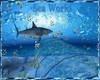 DERIVABLE Aquarium