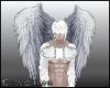 D- Angel Wings