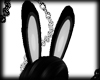 (KMO) bunny ears black