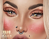 Glitter blush v1