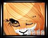 :V: Foxii Locks1::