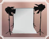 Photo Backdrop White