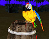 Pirates Parrot Animated