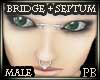 PBBridge+Septum Piercing