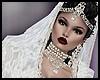White Saree Bundle