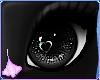 Oxu | Black Eyes Poodle
