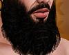 C. Kings Beard