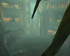 Fire crypt(anim)(sound)