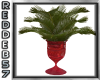 50's Red Vased Fern
