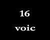 16voic-M & F