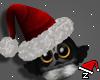 christmas owl   xmas