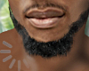 ITI SMALL BEARD