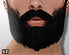 Beard. viking