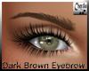 Dark Brown Eyebrow