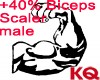 KQ +40% Biceps Scaler M