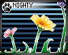 N: Flower 2