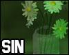 OS| Garden Daisys