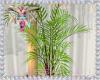 Boho Plant 1