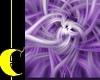 Purple Swirl Photoshoot