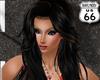 SD Ctarina Black Brown