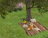 LKC Picnic with Tree
