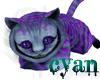 *c* Lavendar Cheshire
