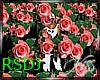 RoseDJEfect (RSDJ)