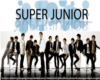 SuperJunior Trig.Panel 2