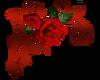 Rose Upper Left