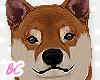 Shiba Inu Dog 2