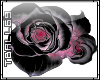black rose sticker