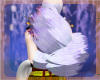 Willow Arm Fur