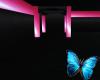 {S}Pink Shine Club