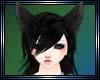 !Y Black wolf ears