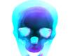 Rave Skull