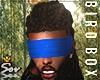 Bird Box Blindfold