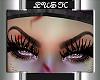 Zeta Eyebrows