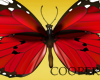 !A butterflies on the h