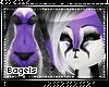 .B. Racco furry 7