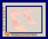 (CR)V2-2019EP-PkWh Heels