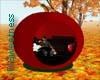 FLS Red Apple Gazebo