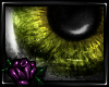 [C] Demonic | Forest