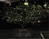 Romantic Lighted Tree