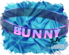 Blue/Pink Bunny Collar