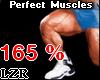 Muscles Legs *PT 165%