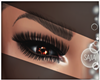 S! Chocolate Eye  Flash