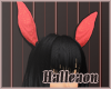 ..H.. Bl Bunny Glam Ears
