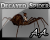 *AA* Decayed Spider M