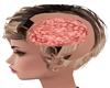 Smart Cerebro Brain